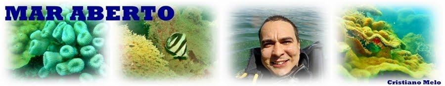 Mar Aberto - Informação e Biodivesidade Marinha