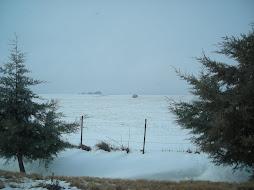 Nieve 2010