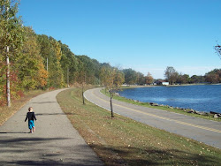Unlikely Origins