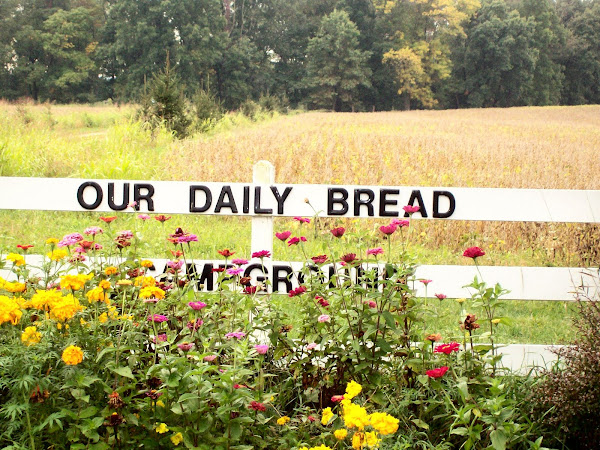 Our Daily Bread Christian Healthcare, Lifestyle Center, Campground