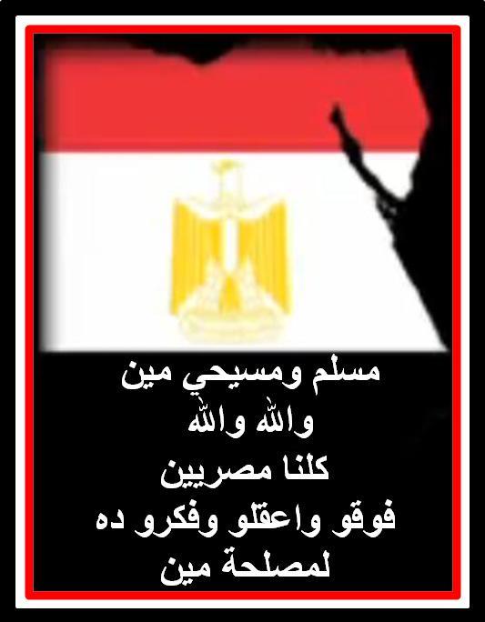 بوستات وطنية لثورة 25 يناير 2016