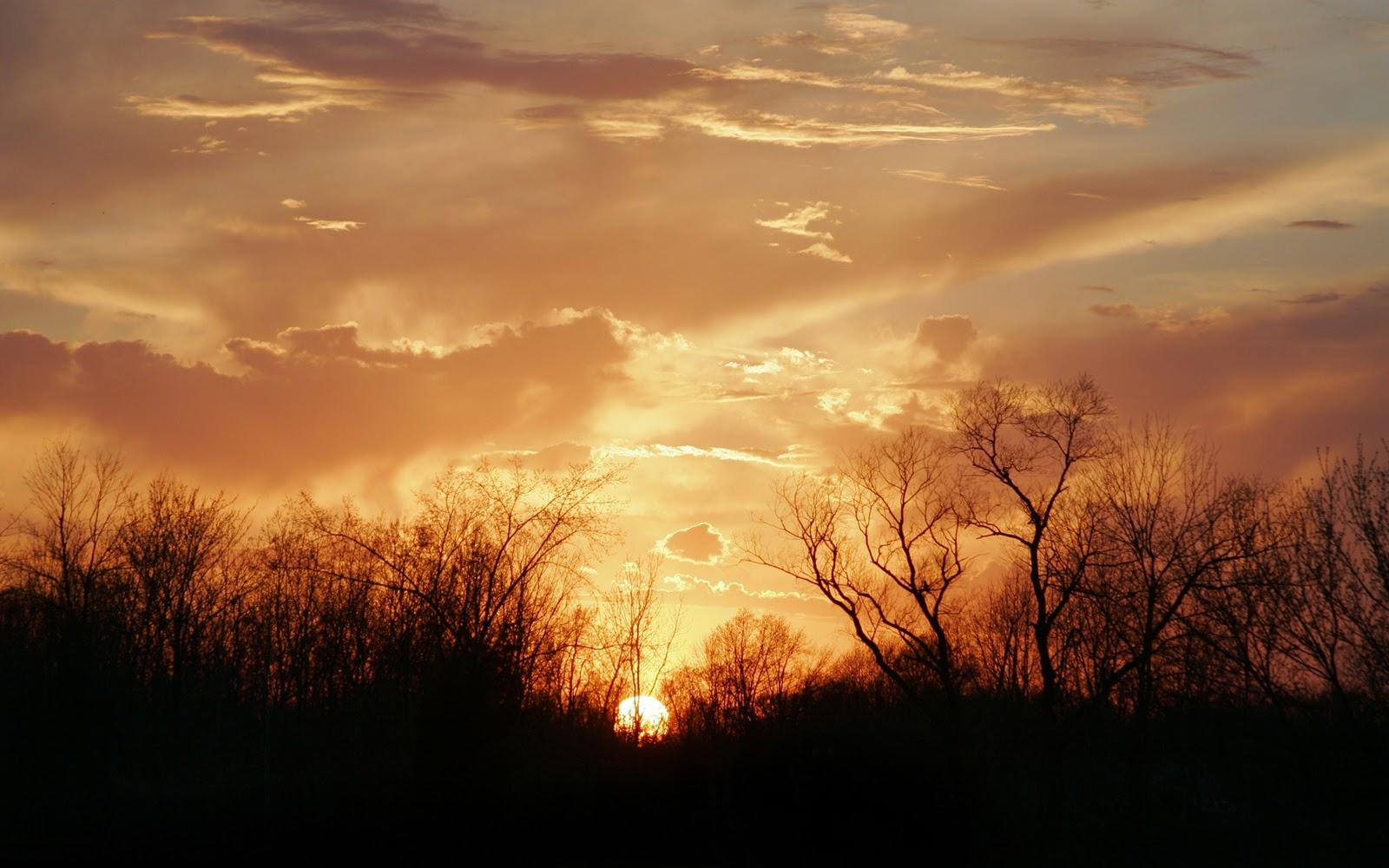 http://2.bp.blogspot.com/_g0tv7q-b5Cw/TQppXe4AYNI/AAAAAAAAAMU/t0hLBDodMkA/s1600/Gorgeous_Country_Sunset_by_Armedwithacamera.jpg