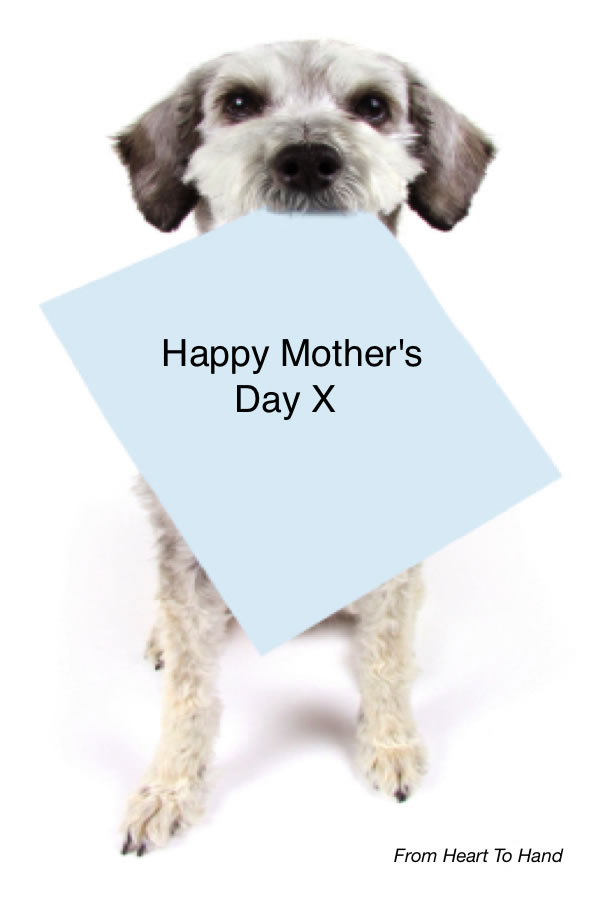 funny mothers day cards. Funny+mothers+day+poems+