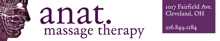 anat. massage therapy