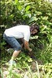 Carmen plantando PAU BRASIL