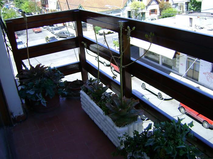 Balcon saliente en el Living comedor