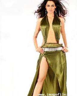 Shweta Tiwari Bikini Swimsuit Photos