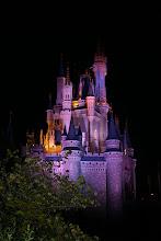 Disney Orlando Castillo