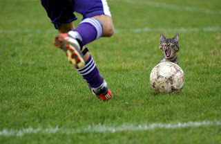 Gran chiste sobre Mundial de Futbol
