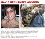 Perro Asesinado Brutalmente en Tucumán