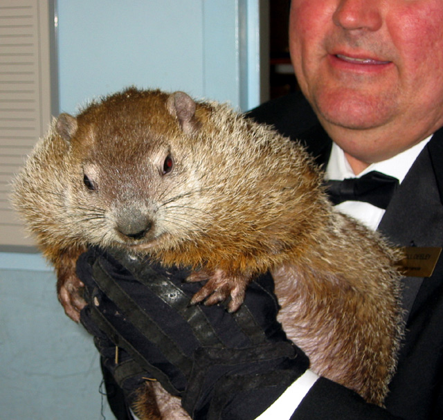 The detectives were off to PA to see if Punxsutawney Phil was going