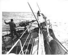 "Australia""s last Whaling fleet 1977"