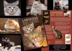Larousse dos Gatos