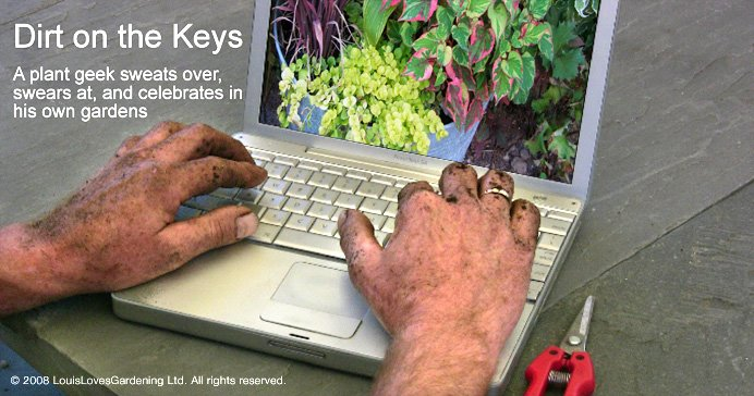 Dirt on the Keys