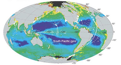 pacific ocean currents and temperature  Images taken from: