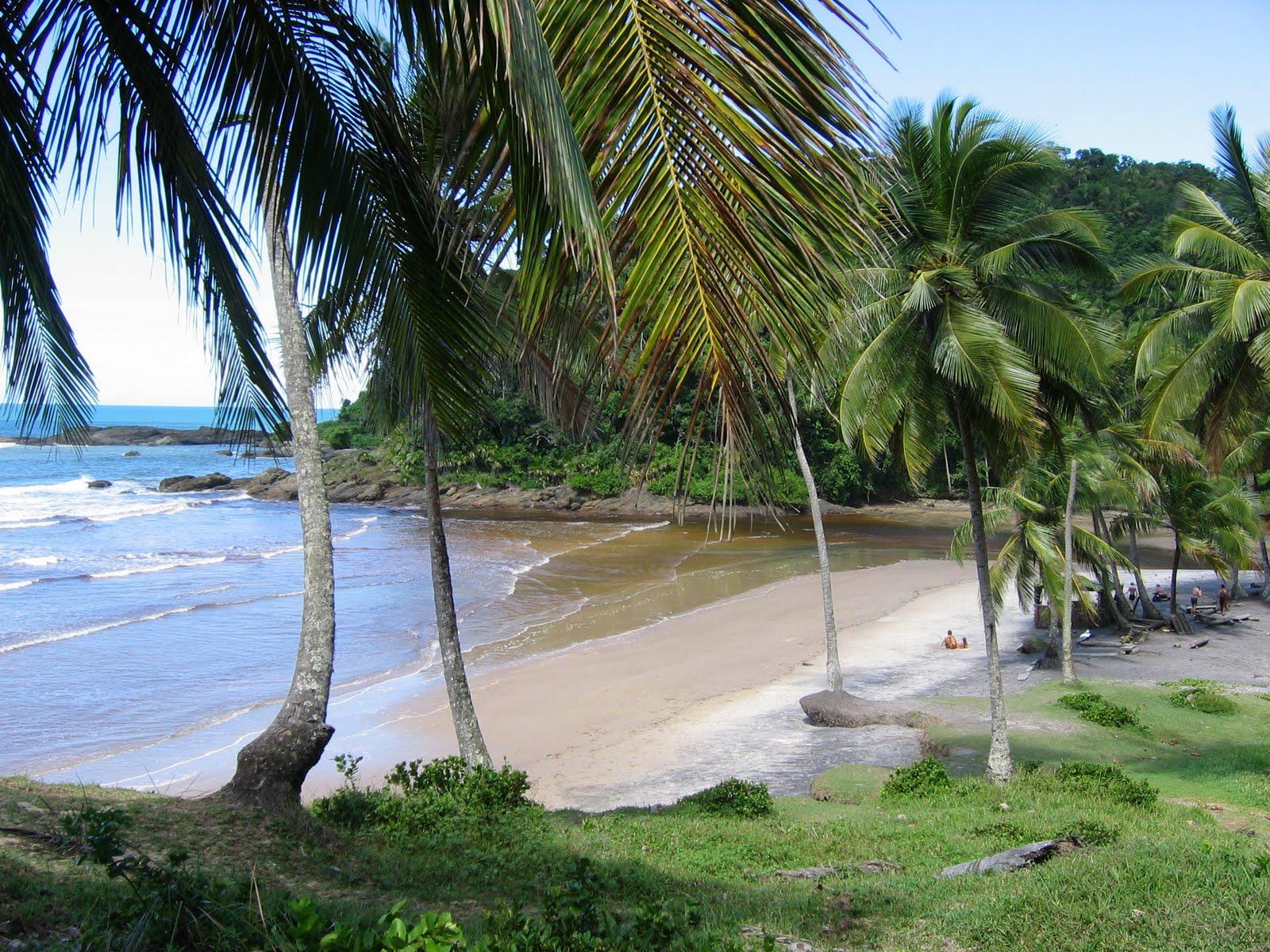 Imagens de #275EA4 De cima pra baixo: Praia de Itacarezinho praia de Jeribucaçu rio  1600x1200 px 3548 Blindex Banheiro Fortaleza
