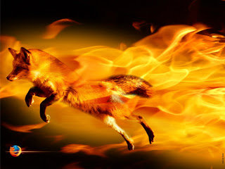 firefox wallpapers 1024 x 768 pixels
