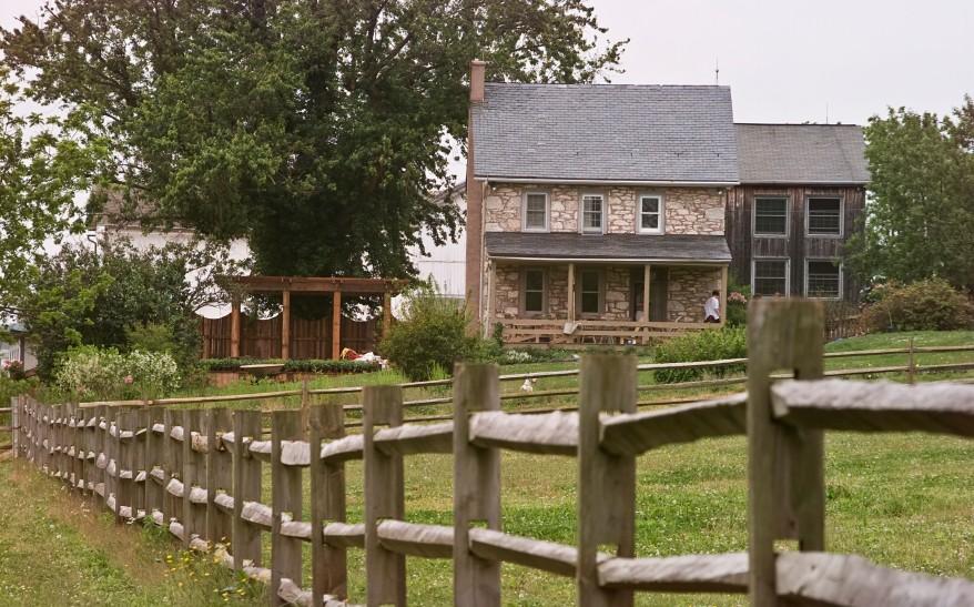 Tray bella farmhouse friday