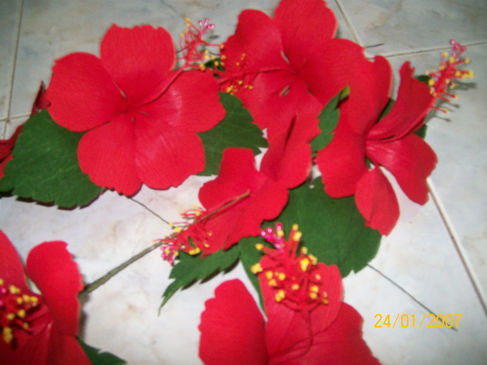 Tinas creations paper hibiscus shoe flower this is a picture of a real hibiscus flower want to try one in pink and white soon izmirmasajfo