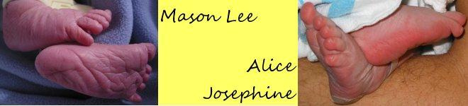 Mason and Alice