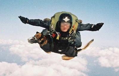 British S.A.S.  HALO jumper with real dog of war