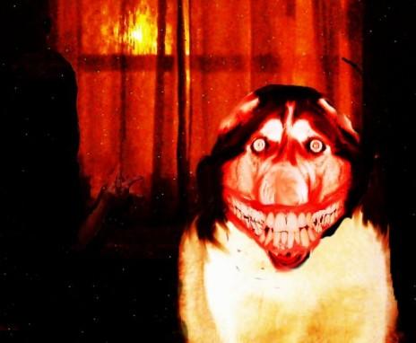 http://2.bp.blogspot.com/_gCpp8RpNCC0/TRJbI-nKoGI/AAAAAAAAAlk/ucEd-nO6XK0/s1600/Smile.dog.jpg