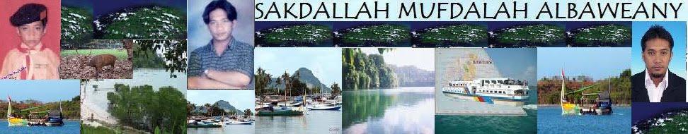 SAKDALLAH AL-BAWEANY.COM