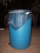 Finished rain barrel