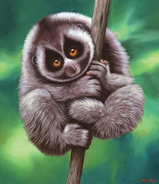 Polidoroweb le pi belle immagini di scimmie del mondo for Immagini di belle case