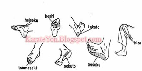 TECHNIQUES SHITŌ-RYŪ | KarateYon.