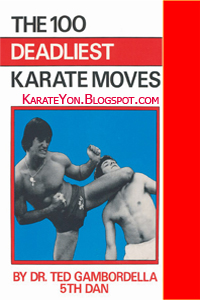 100 Deadliest Karate Moves