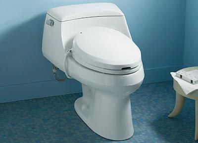 Kohler C3 Toilet Seat Bidet High Tech Alternative To Toilet Tissue Mark 3