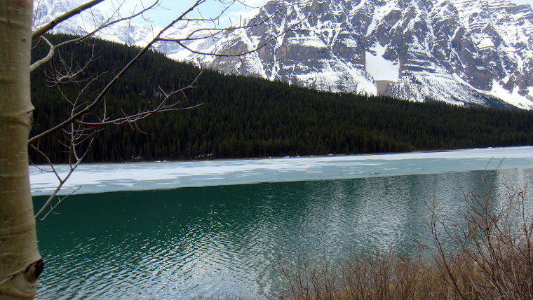 We Did See Turquoise Water in Lake Louise Area