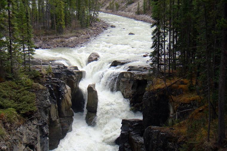 Water Falls Near Lake Louise