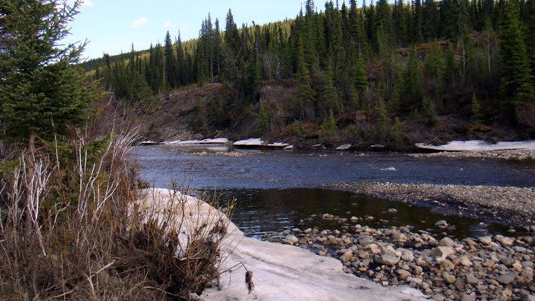 River in Buckinghorse Provincial Park Where We Parked
