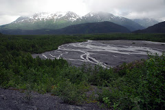 Water Running Off of Exit Glacier