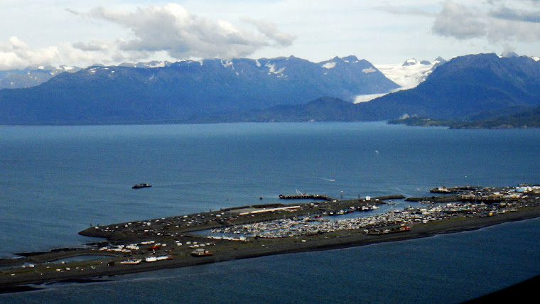 Picture of Homer Spit Taken From the Airplane