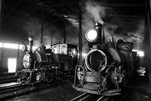 Faster than fairies, faster than witches: The Last Steam Trains