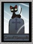 Gatinhos do cemitério