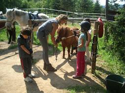 salida fundacion mona, parque y caballos