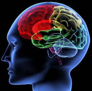 [TIPS] 10 Cara Olahraga Otak!!