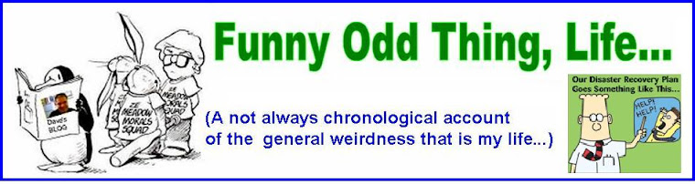 Funny Odd Thing,  Life....