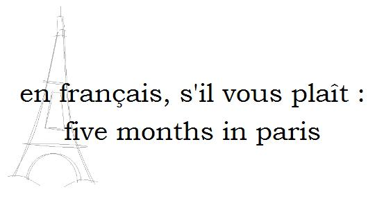 en francais, s'il vous plait: five months in paris