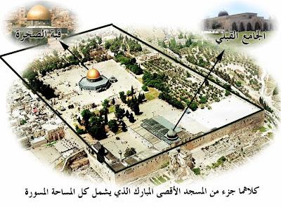 يهود يستحقون تكون دولة بيننا 1219436941.jpg