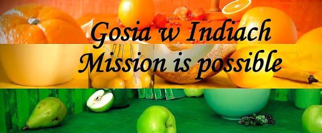 Gosia w Indiach