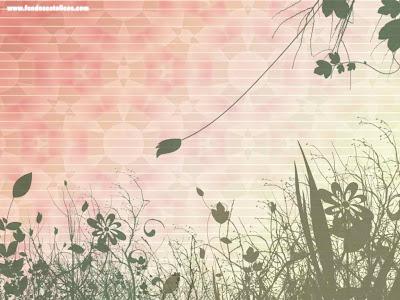 wallpapers de flores. imagenes de flores bonitas