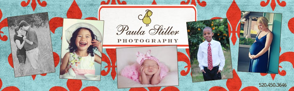 Paula Stiller Photography