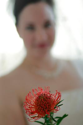 NC bride