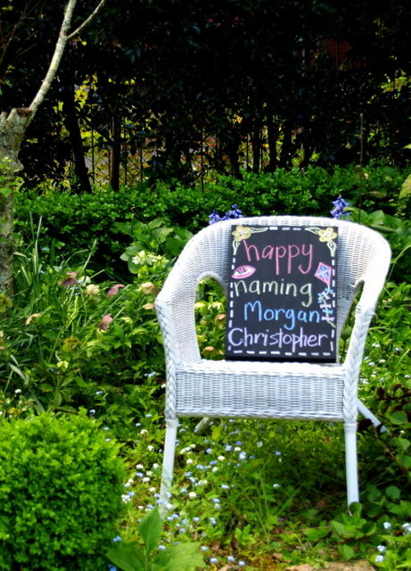 another donkey design: Spring Garden Party - Decorating Ideas