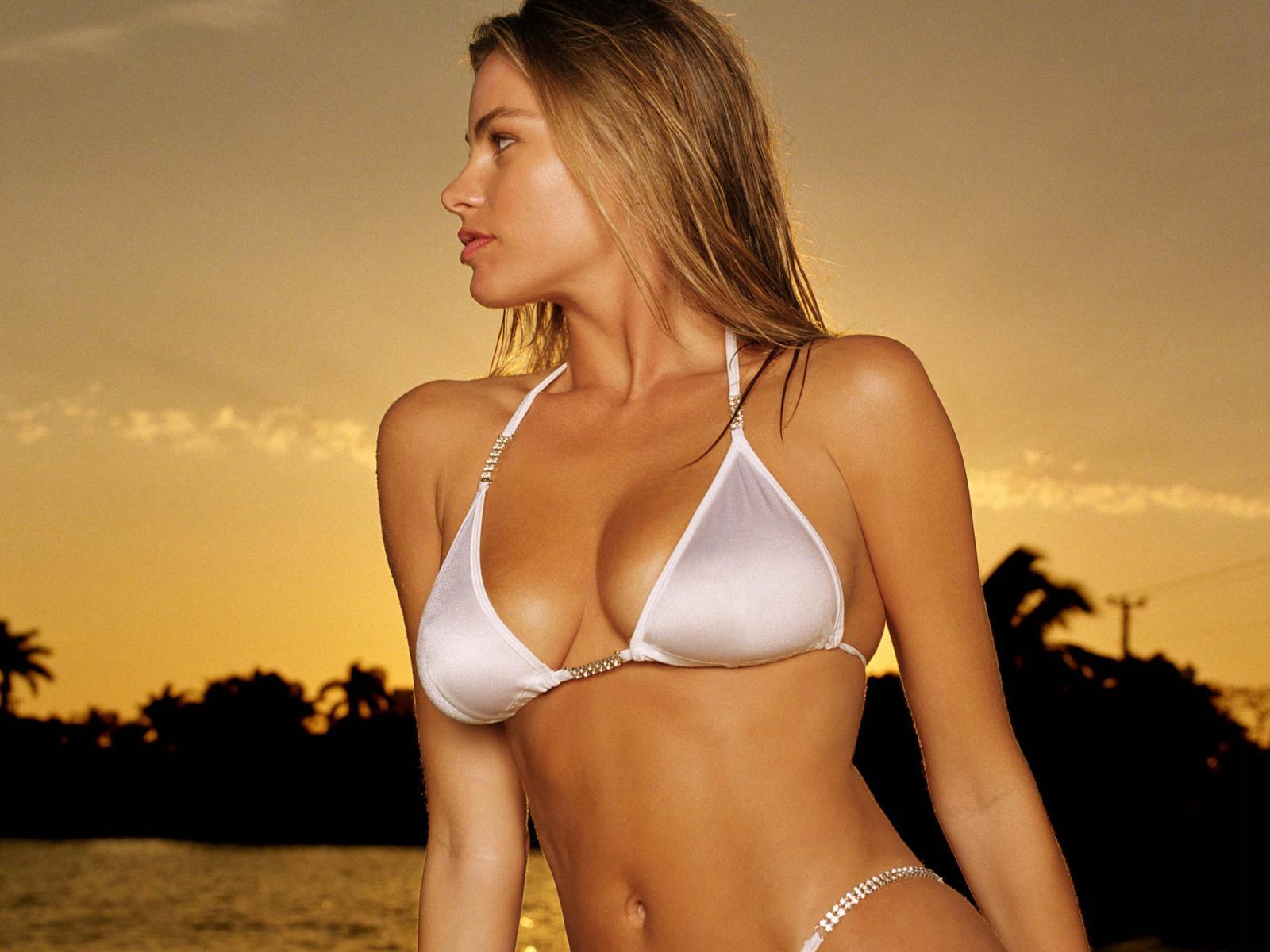 http://2.bp.blogspot.com/_gRl1tLJOW7Q/TLfeZ0klavI/AAAAAAAABMw/EDAO73JxGWU/s1600/sofia_vergara_hot_bikini_desktop_wallpaper_39665_raj.jpg